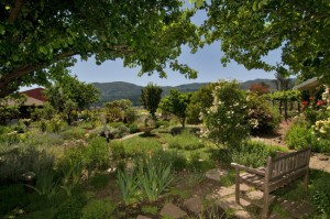Views of the Garden and Hills