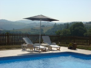 The Pros and Cons of Buying a Home with a Swimming Pool | Bay Area Real  Estate Market Blog | Pacific Union