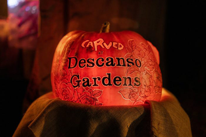 California Real Estate Blog - Carved at Descanso