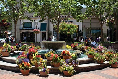 Fountain and flowers in Walnut Creek, California.