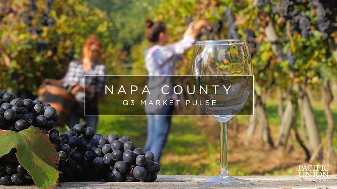 vineyard and wine glass