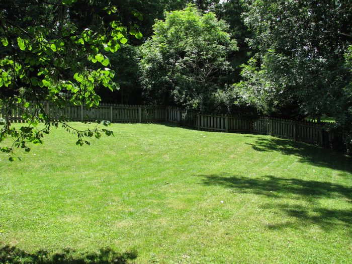 Researchers Say Your Backyard Is Good For Your Health