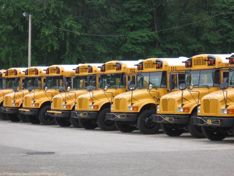 buses-lg