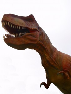 picture of a T. Rex