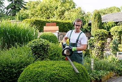 Landscape professional working