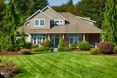 Lawn Care Know The Difference Between Not Enough And Too Much California Real Estate Blog
