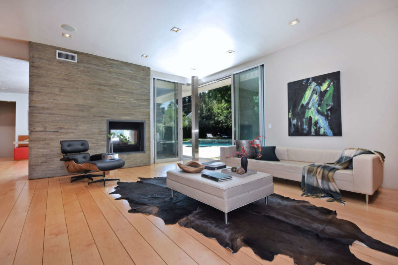 Modern architecture living room
