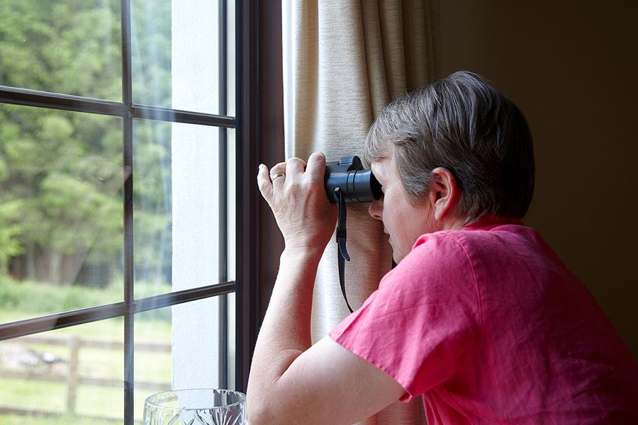 Nosey neighbour at the window with binoculars - Pacific Union