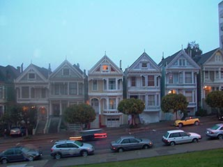 paintedladies_winter_sm