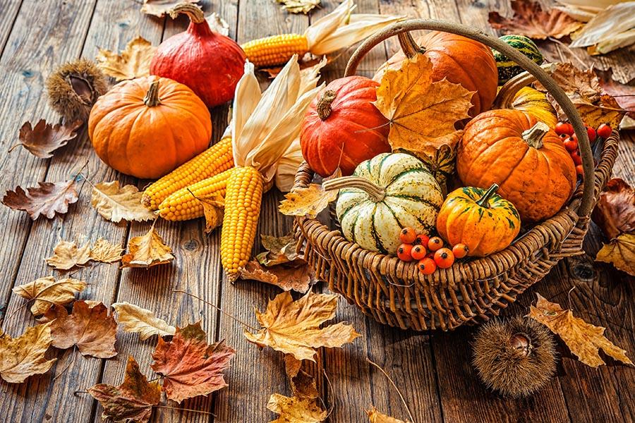 Autumn still life with